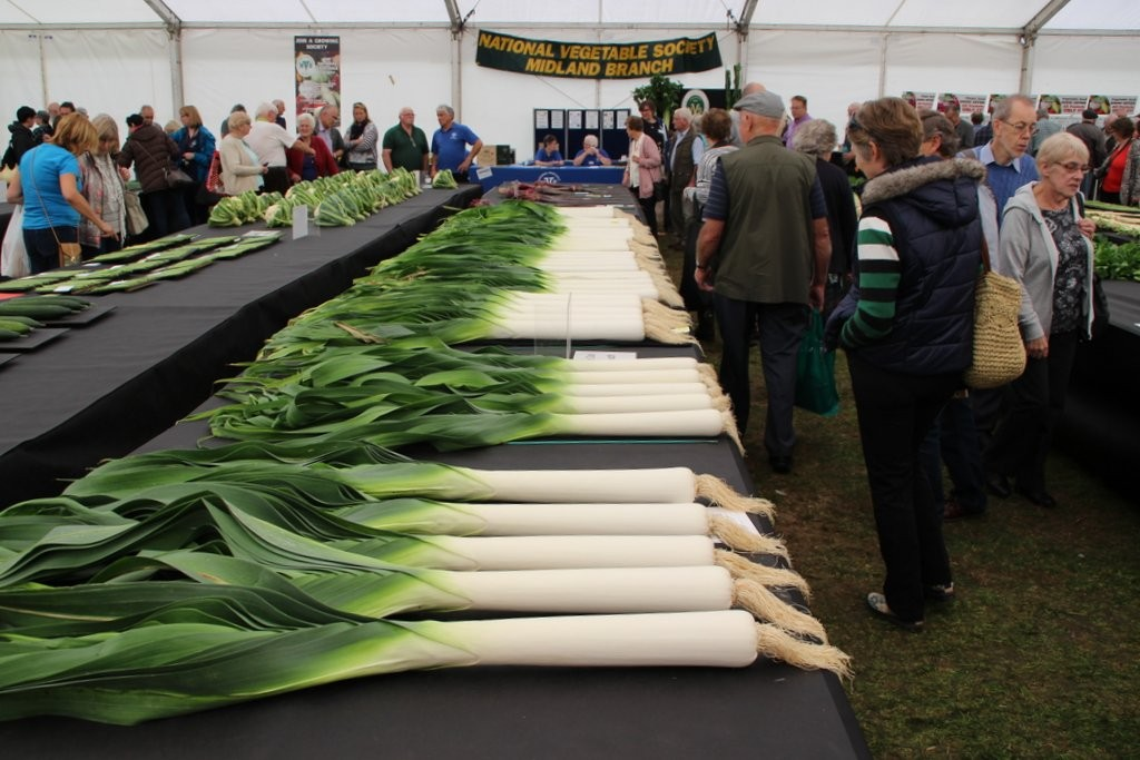 Perfect leeks