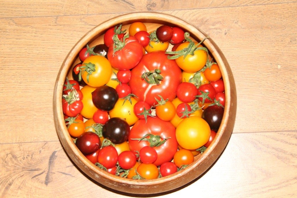Tomatoes 5 Aug 2018